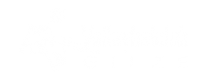 Volleybalclub Gilze